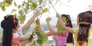 Lễ hội Hoa Ban Điện Biên 2019 mang đậm bản sắc văn hóa Tây Bắc