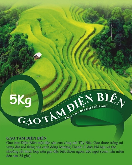 gao-tam-dien-bien-1