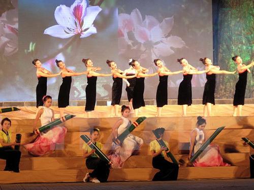 lễ hội hoa ban