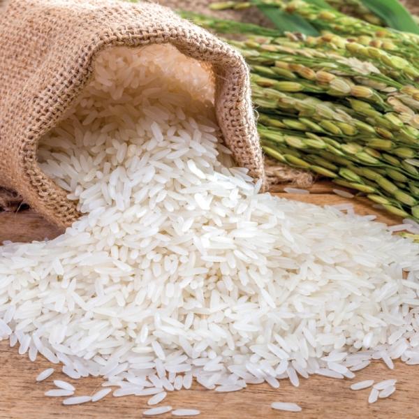 gạo tám thơm Điện Biên