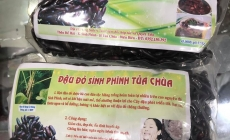 Đậu Đỏ Sính Phình Tủa Chùa